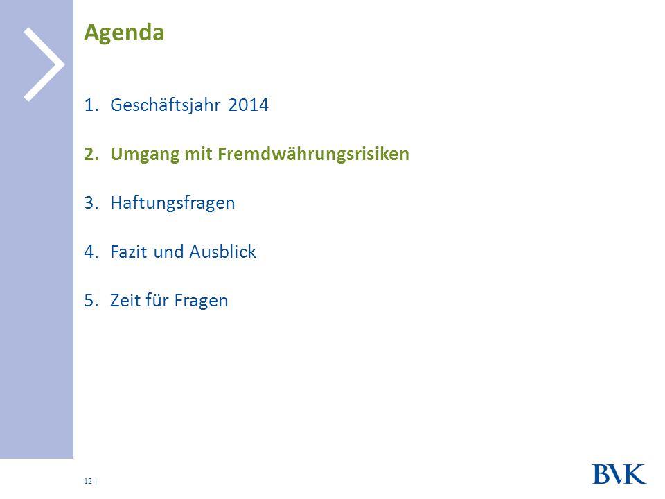 | 1.Geschäftsjahr 2014 2.Umgang mit Fremdwährungsrisiken 3.Haftungsfragen 4.Fazit und Ausblick 5.Zeit für Fragen Agenda 12