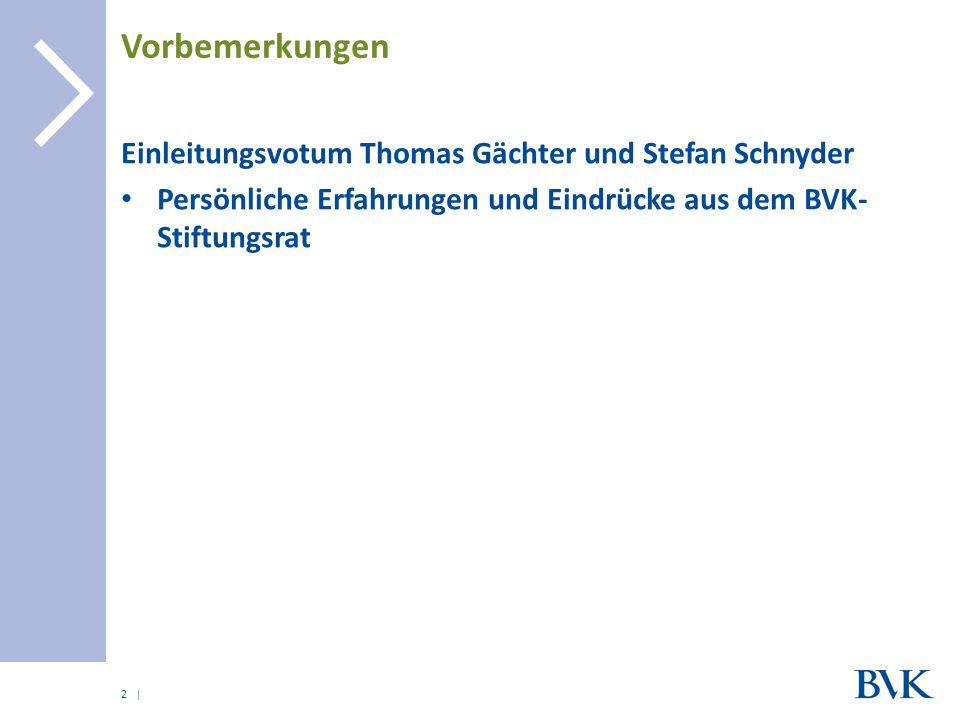 | Vorbemerkungen Einleitungsvotum Thomas Gächter und Stefan Schnyder Persönliche Erfahrungen und Eindrücke aus dem BVK- Stiftungsrat 2
