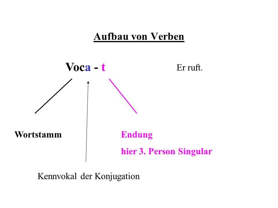 Aufbau von Verben Voca - t WortstammEndung hier 3. Person Singular Er ruft. Kennvokal der Konjugation
