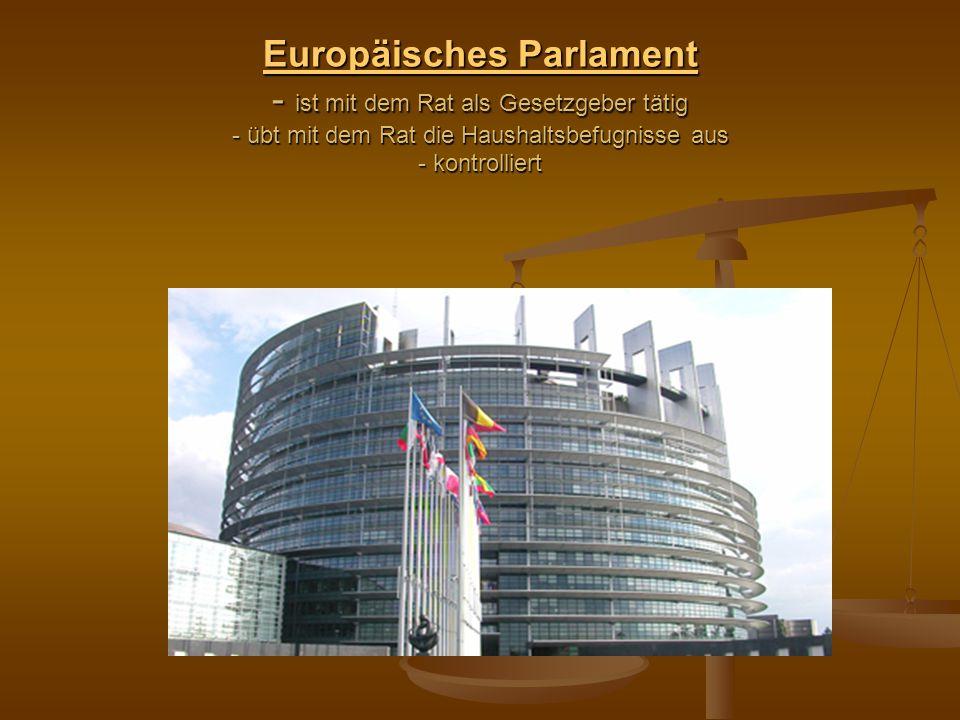 Europäisches Parlament Europäisches Parlament - ist mit dem Rat als Gesetzgeber tätig - übt mit dem Rat die Haushaltsbefugnisse aus - kontrolliert Eur