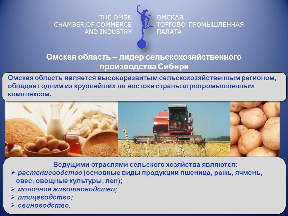 Омская область – лидер сельскохозяйственного производства Сибири THE OMSK CHAMBER OF COMMERCE AND INDUSTRY ОМСКАЯ ТОРГОВО-ПРОМЫШЛЕННАЯ ПАЛАТА Омская область является высокоразвитым сельскохозяйственным регионом, обладает одним из крупнейших на востоке страны агропромышленным комплексом.