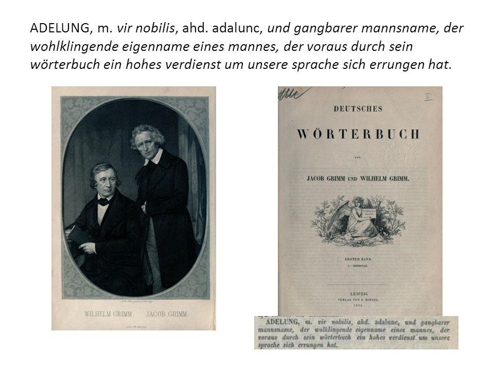 ADELUNG, m. vir nobilis, ahd.