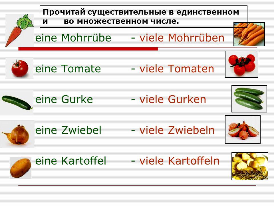  eine Mohrrübe- viele Mohrrüben  eine Tomate- viele Tomaten  eine Gurke- viele Gurken  eine Zwiebel- viele Zwiebeln  eine Kartoffel- viele Kartof