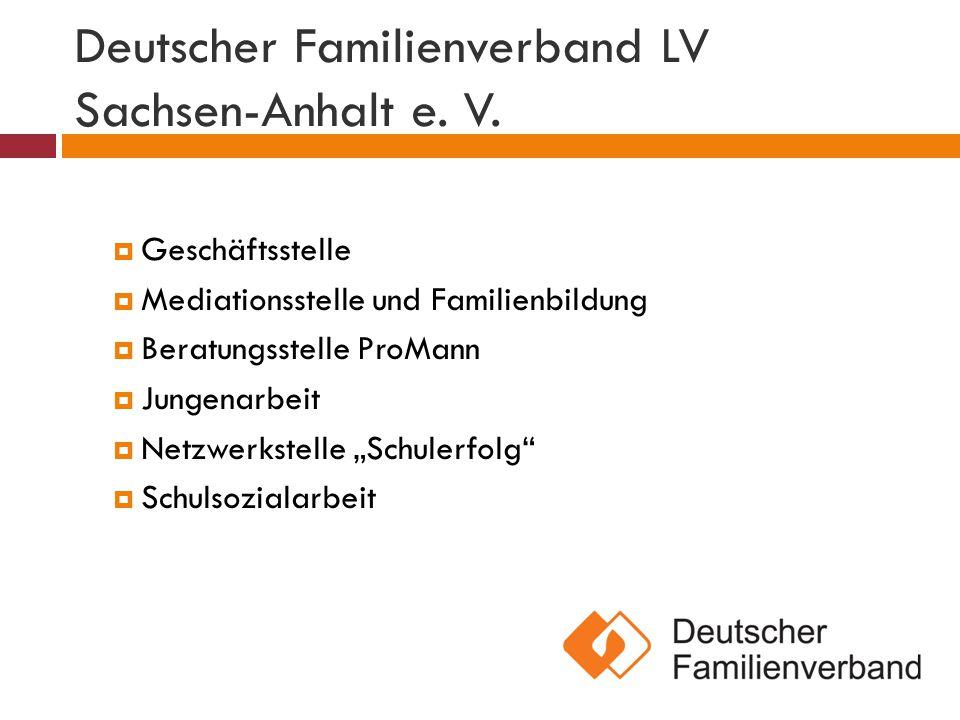 Deutscher Familienverband LV Sachsen-Anhalt e. V.  Geschäftsstelle  Mediationsstelle und Familienbildung  Beratungsstelle ProMann  Jungenarbeit 