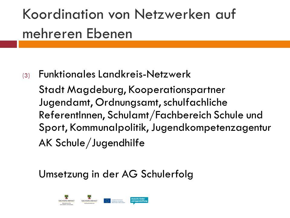 Koordination von Netzwerken auf mehreren Ebenen (3) Funktionales Landkreis-Netzwerk Stadt Magdeburg, Kooperationspartner Jugendamt, Ordnungsamt, schul