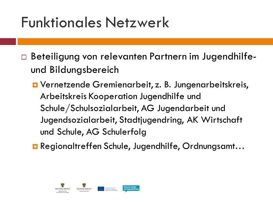 Funktionales Netzwerk  Beteiligung von relevanten Partnern im Jugendhilfe- und Bildungsbereich  Vernetzende Gremienarbeit, z. B. Jungenarbeitskreis,
