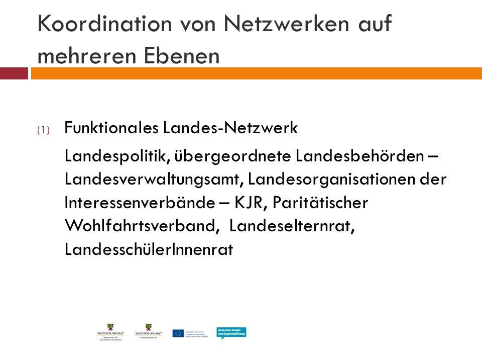 Koordination von Netzwerken auf mehreren Ebenen (1) Funktionales Landes-Netzwerk Landespolitik, übergeordnete Landesbehörden – Landesverwaltungsamt, L