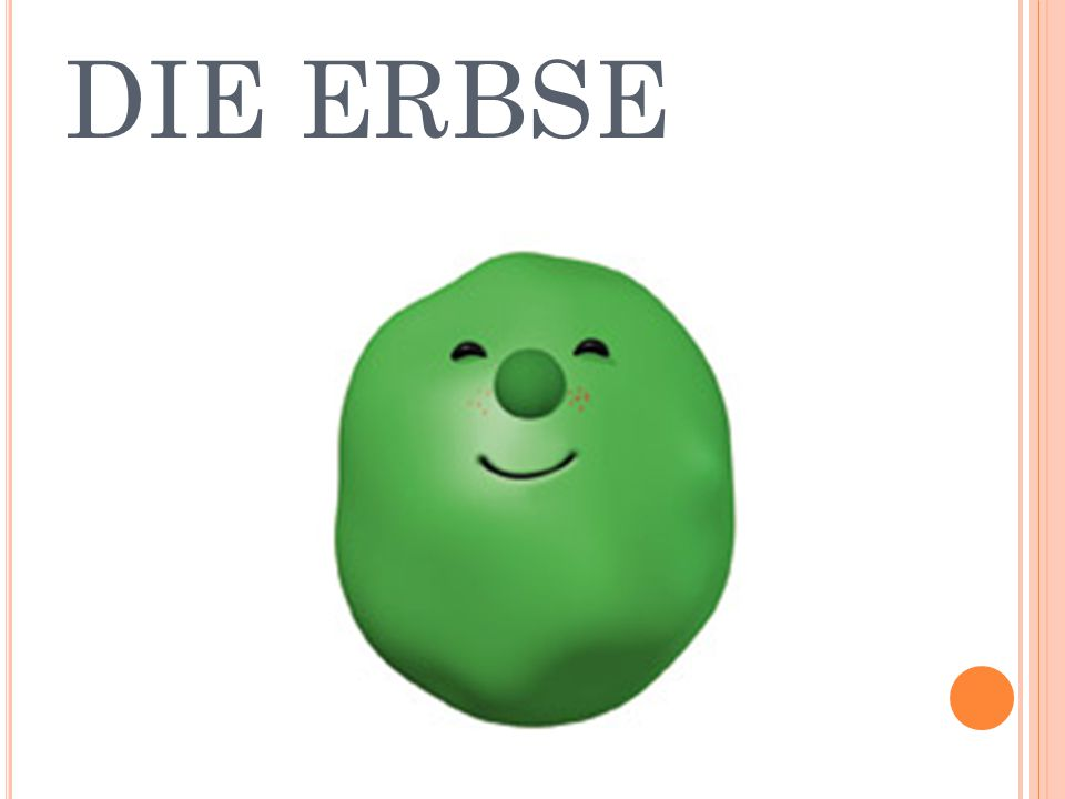 DIE ERBSE