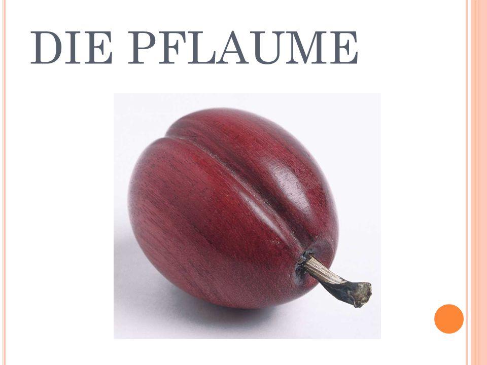 DIE PFLAUME