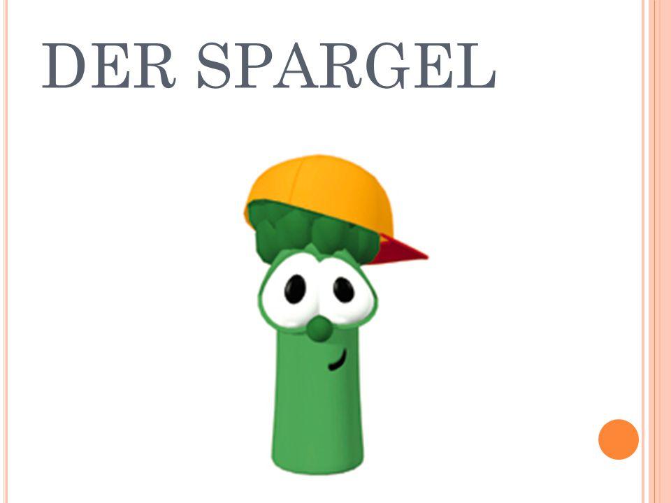 DER SPARGEL
