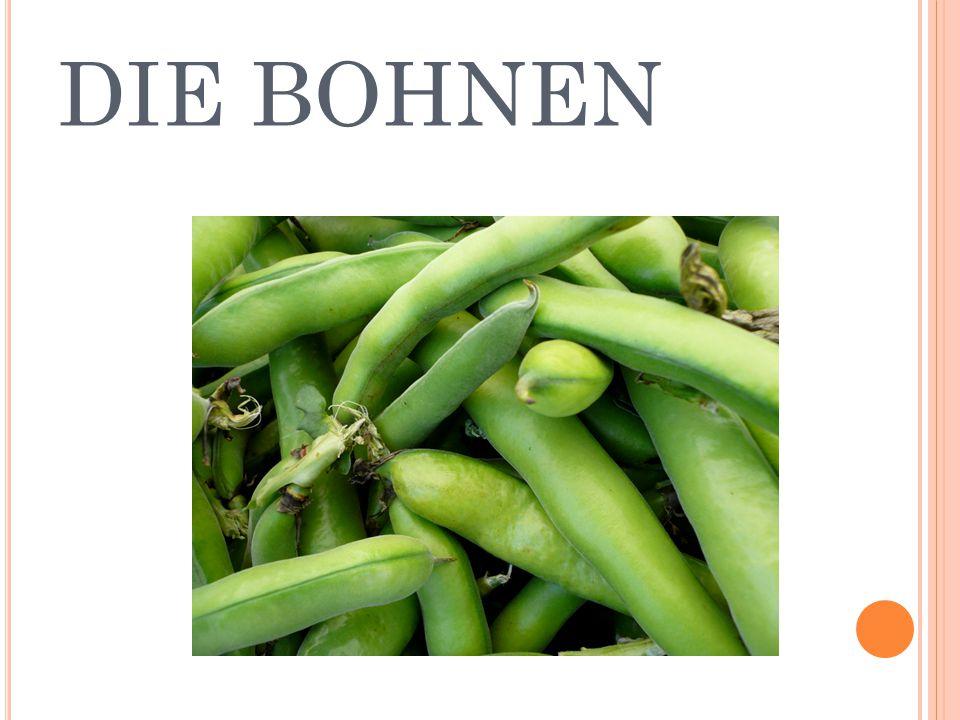DIE BOHNEN
