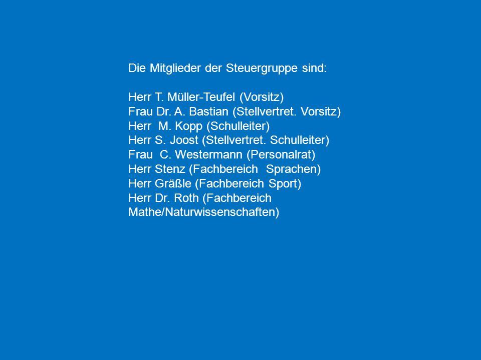 Die Mitglieder der Steuergruppe sind: Herr T. Müller-Teufel (Vorsitz) Frau Dr. A. Bastian (Stellvertret. Vorsitz) Herr M. Kopp (Schulleiter) Herr S. J