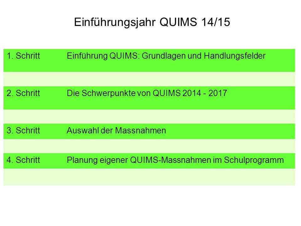 Einführungsjahr QUIMS 14/15 1. Schritt Einführung QUIMS: Grundlagen und Handlungsfelder 2. Schritt Die Schwerpunkte von QUIMS 2014 - 2017 3. Schritt A