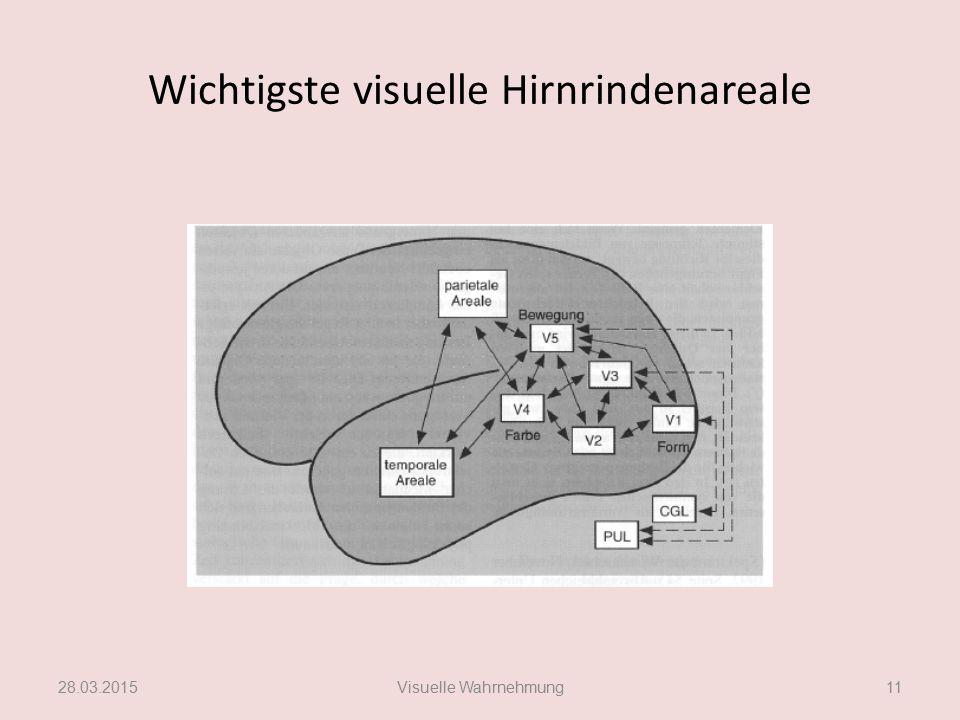Wichtigste visuelle Hirnrindenareale 28.03.2015Visuelle Wahrnehmung11