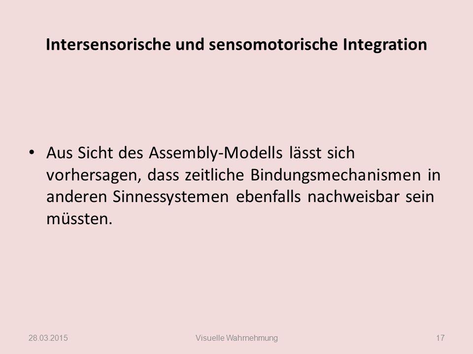 Intersensorische und sensomotorische Integration Aus Sicht des Assembly-Modells lässt sich vorhersagen, dass zeitliche Bindungsmechanismen in anderen