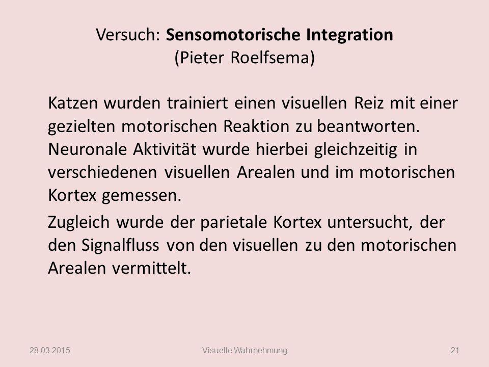 Versuch: Sensomotorische Integration (Pieter Roelfsema) Katzen wurden trainiert einen visuellen Reiz mit einer gezielten motorischen Reaktion zu beant