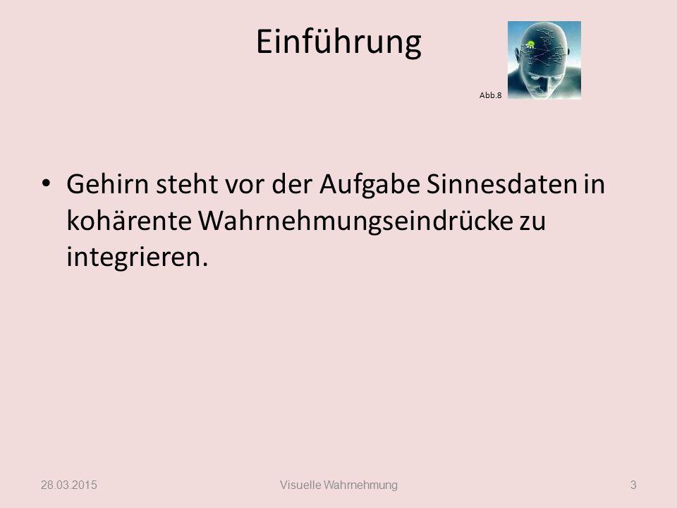 Erklärungsmodell Integrationsmechanismus Christoph von der Malsburg 28.03.2015Visuelle Wahrnehmung14