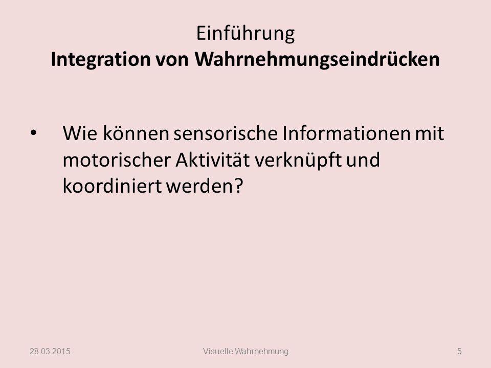 Einführung Integration von Wahrnehmungseindrücken Wie können sensorische Informationen mit motorischer Aktivität verknüpft und koordiniert werden? 28.