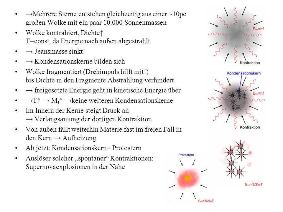 →Mehrere Sterne entstehen gleichzeitig aus einer ~10pc großen Wolke mit ein paar 10.000 Sonnenmassen Wolke kontrahiert, Dichte↑ T=const, da Energie nach außen abgestrahlt → Jeansmasse sinkt.