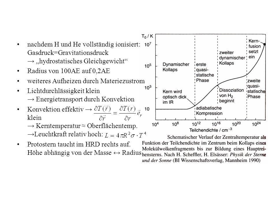 """nachdem H und He vollständig ionisiert: Gasdruck=Gravitationsdruck → """"hydrostatisches Gleichgewicht Radius von 100AE auf 0,2AE weiteres Aufheizen durch Materiezustrom Lichtdurchlässigkeit klein → Energietransport durch Konvektion Konvektion effektiv → klein → Kerntemperatur ≈ Oberflächentemp."""