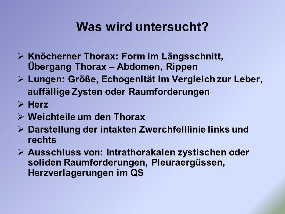 Was wird untersucht?  Knöcherner Thorax: Form im Längsschnitt, Übergang Thorax – Abdomen, Rippen  Lungen: Größe, Echogenität im Vergleich zur Leber,