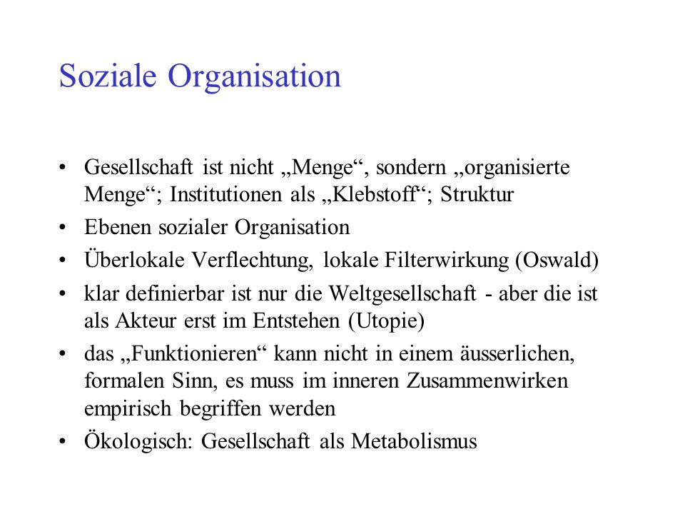 """Soziale Organisation Gesellschaft ist nicht """"Menge"""", sondern """"organisierte Menge""""; Institutionen als """"Klebstoff""""; Struktur Ebenen sozialer Organisatio"""