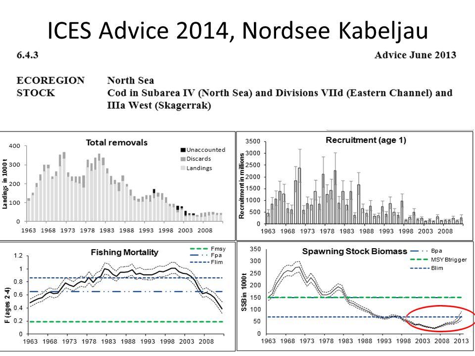 ICES Advice 2014, Nordsee Kabeljau