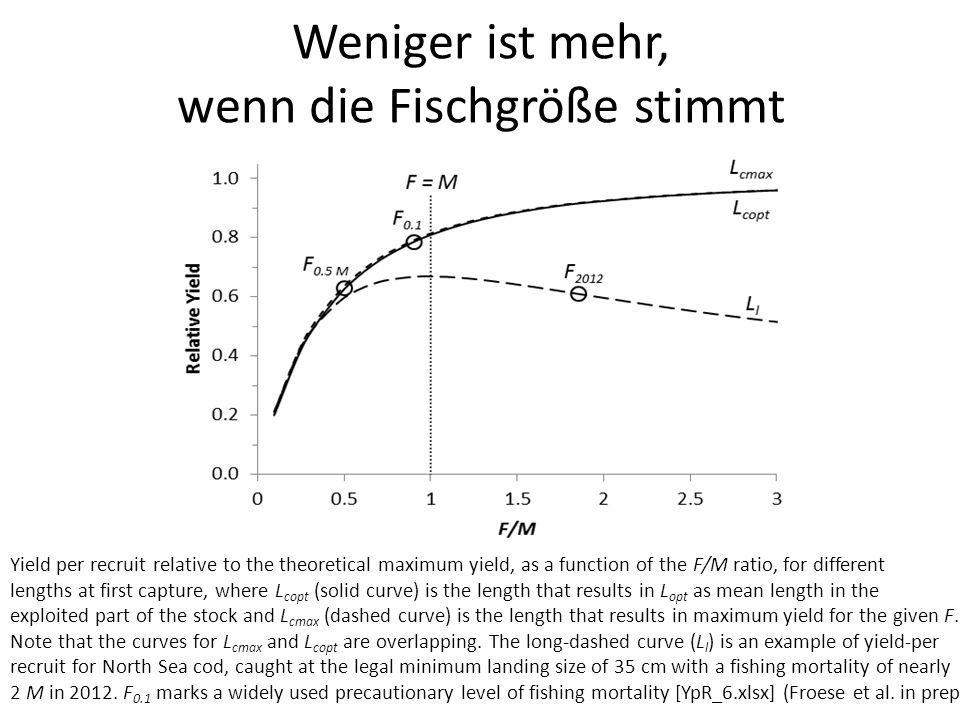 Weniger ist mehr, wenn die Fischgröße stimmt Yield per recruit relative to the theoretical maximum yield, as a function of the F/M ratio, for different lengths at first capture, where L copt (solid curve) is the length that results in L opt as mean length in the exploited part of the stock and L cmax (dashed curve) is the length that results in maximum yield for the given F.
