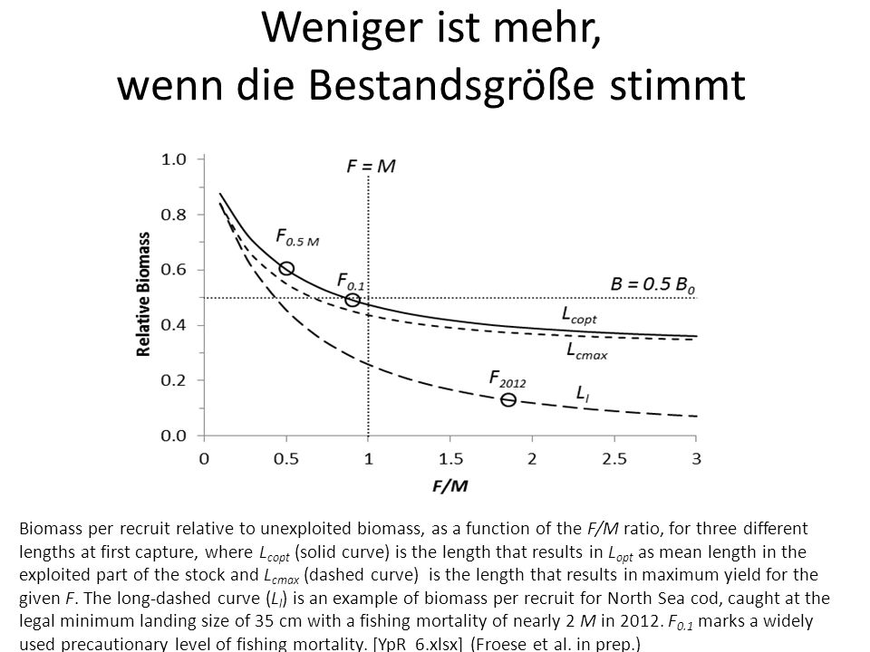 Weniger ist mehr, wenn die Bestandsgröße stimmt Biomass per recruit relative to unexploited biomass, as a function of the F/M ratio, for three different lengths at first capture, where L copt (solid curve) is the length that results in L opt as mean length in the exploited part of the stock and L cmax (dashed curve) is the length that results in maximum yield for the given F.