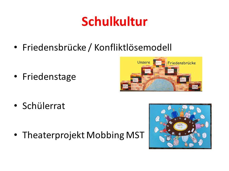 Schulkultur Friedensbrücke / Konfliktlösemodell Friedenstage Schülerrat Theaterprojekt Mobbing MST