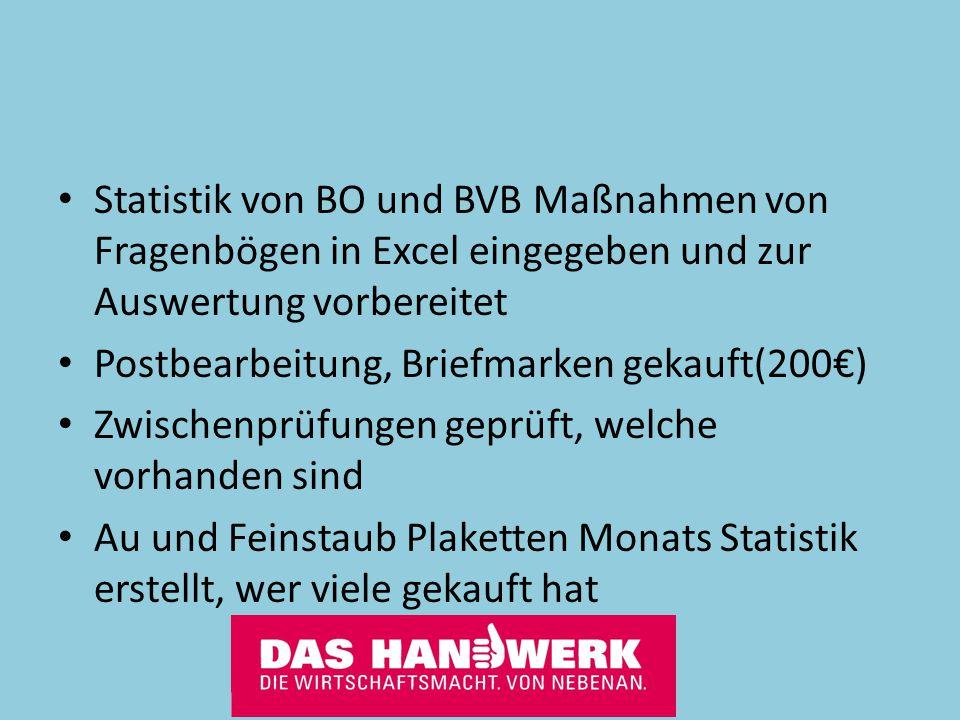 Statistik von BO und BVB Maßnahmen von Fragenbögen in Excel eingegeben und zur Auswertung vorbereitet Postbearbeitung, Briefmarken gekauft(200€) Zwisc