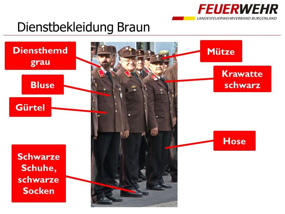 Dienstbekleidung Braun Mütze Diensthemd grau Krawatte schwarz Bluse Gürtel Hose Schwarze Schuhe, schwarze Socken