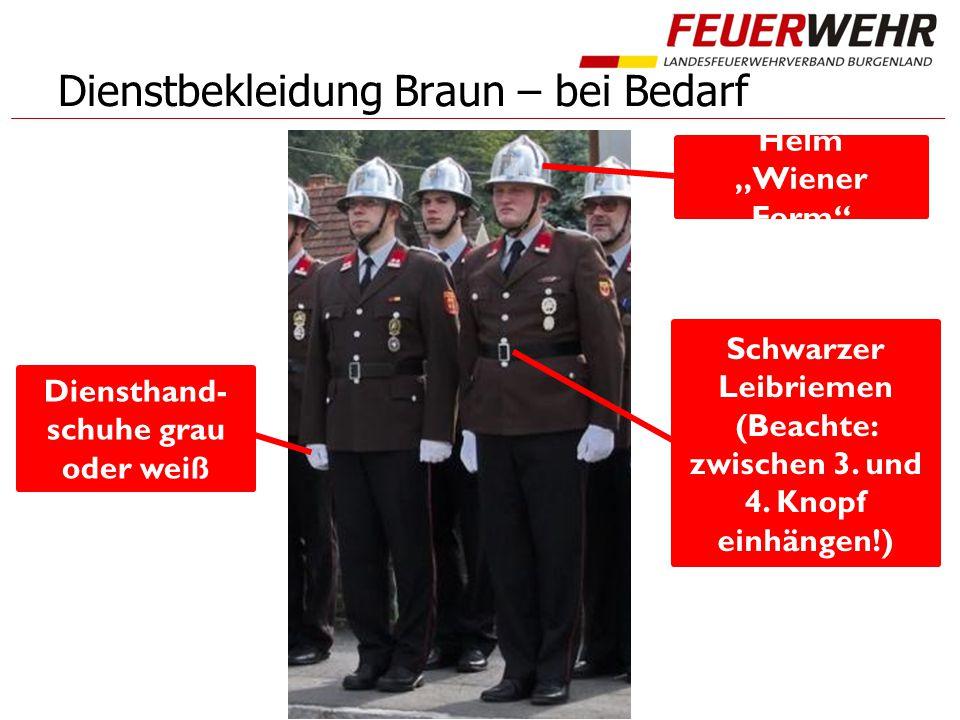 """Dienstbekleidung Braun – bei Bedarf Helm """"Wiener Form"""" Diensthand- schuhe grau oder weiß Schwarzer Leibriemen (Beachte: zwischen 3. und 4. Knopf einhä"""