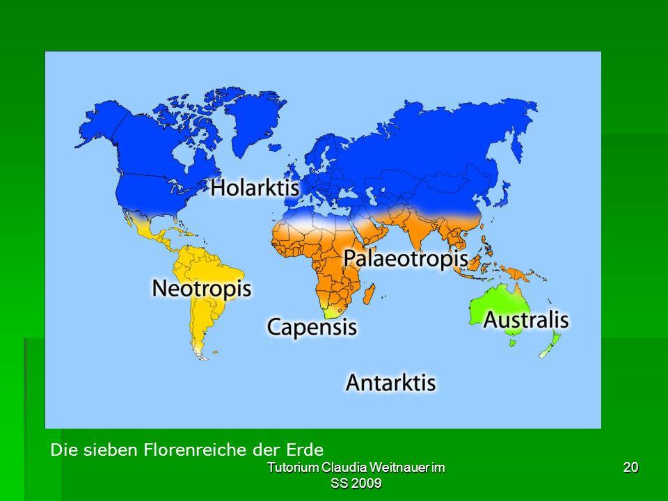 Tutorium Claudia Weitnauer im SS 2009 20 Die sieben Florenreiche der Erde