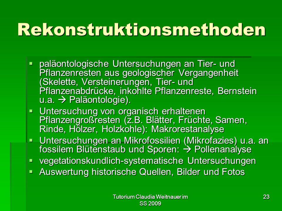Tutorium Claudia Weitnauer im SS 2009 23 Rekonstruktionsmethoden  paläontologische Untersuchungen an Tier- und Pflanzenresten aus geologischer Vergan