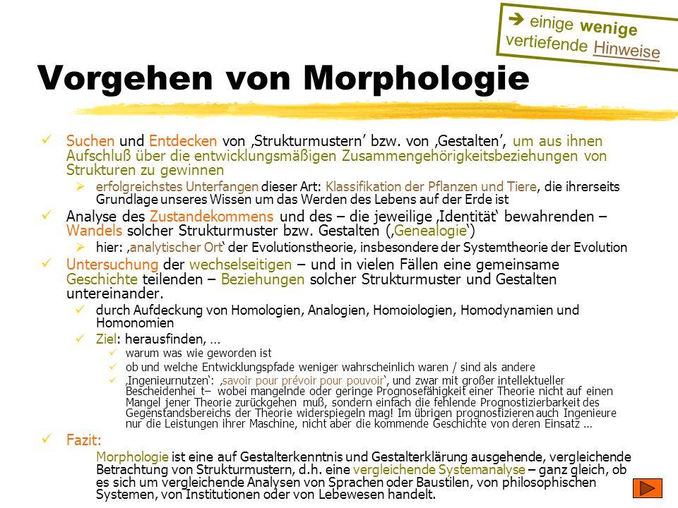 TU Dresden – Institut für Politikwissenschaft – Prof. Dr. Werner J. Patzelt Vorgehen von Morphologie Suchen und Entdecken von 'Strukturmustern' bzw. v