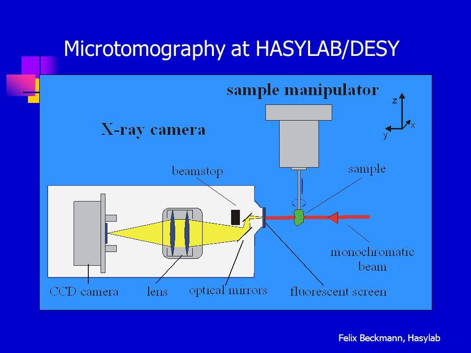 Microtomography at HASYLAB/DESY Felix Beckmann, Hasylab