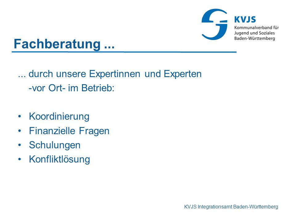 KVJS Integrationsamt Baden-Württemberg Fachberatung...... durch unsere Expertinnen und Experten -vor Ort- im Betrieb: Koordinierung Finanzielle Fragen