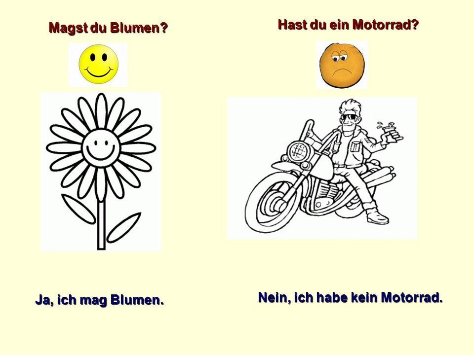 Magst du Blumen? Ja, ich mag Blumen. Hast du ein Motorrad? Nein, ich habe kein Motorrad.