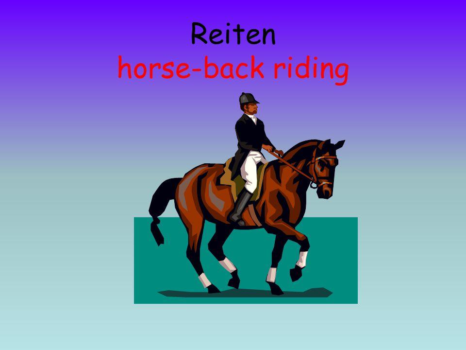 Reiten horse-back riding