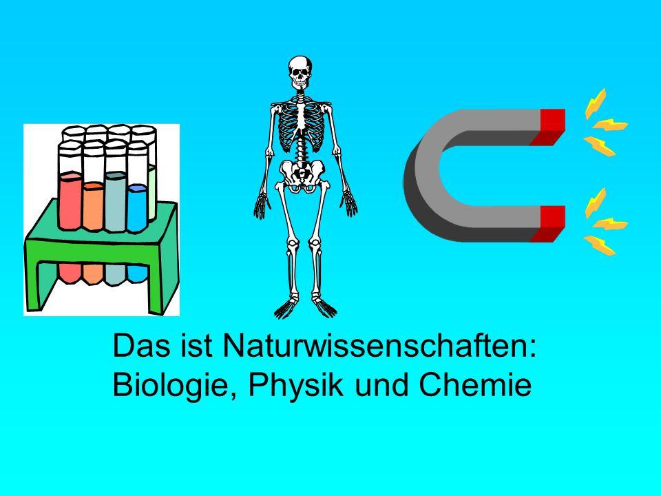 Das ist Naturwissenschaften: Biologie, Physik und Chemie
