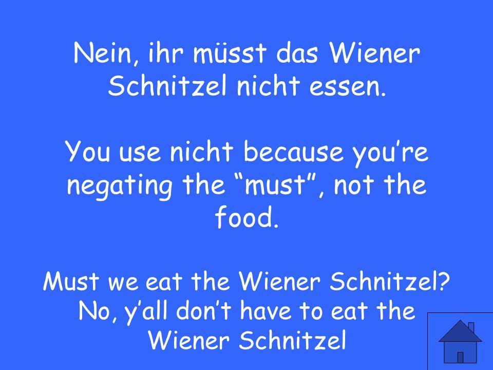 """51 Nein, ihr müsst das Wiener Schnitzel nicht essen. You use nicht because you're negating the """"must"""", not the food. Must we eat the Wiener Schnitzel?"""
