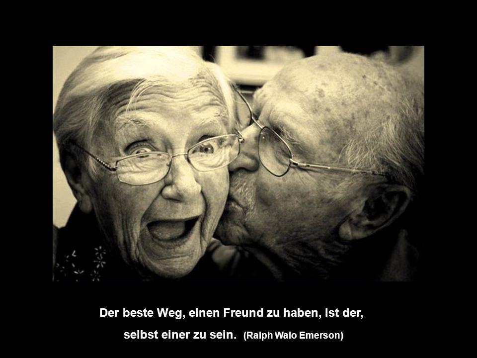 Ein wahrer Freund ist einer, der kommt, wenn der Rest der Welt geht. (Walter Wincell)
