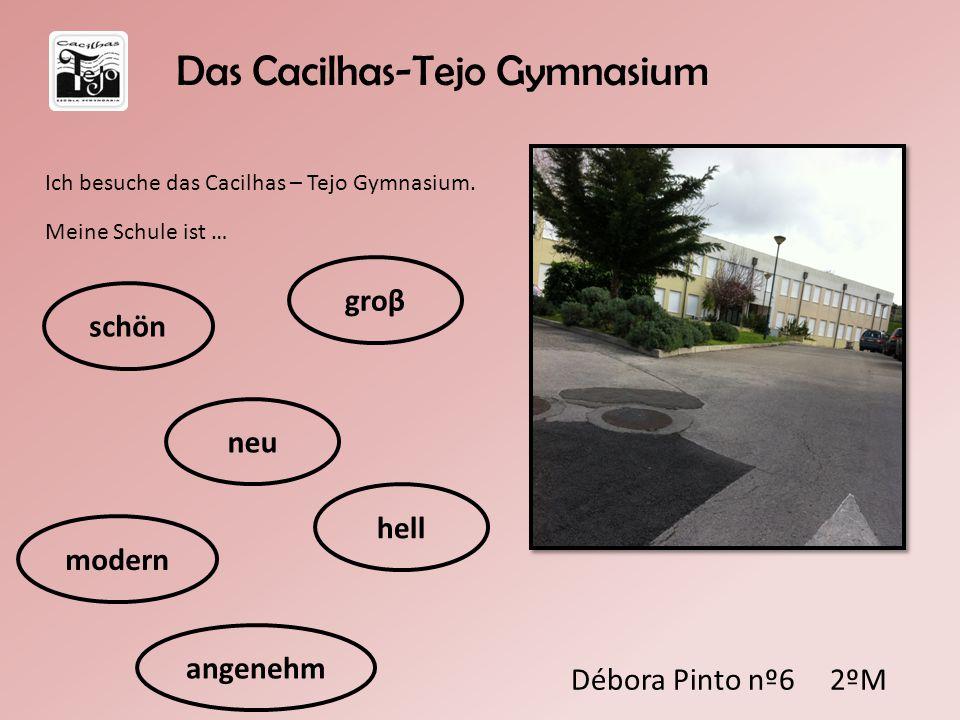Débora Pinto nº6 2ºM Ich besuche das Cacilhas – Tejo Gymnasium. Meine Schule ist … schön Das Cacilhas-Tejo Gymnasium neu modern angenehm hell groβ