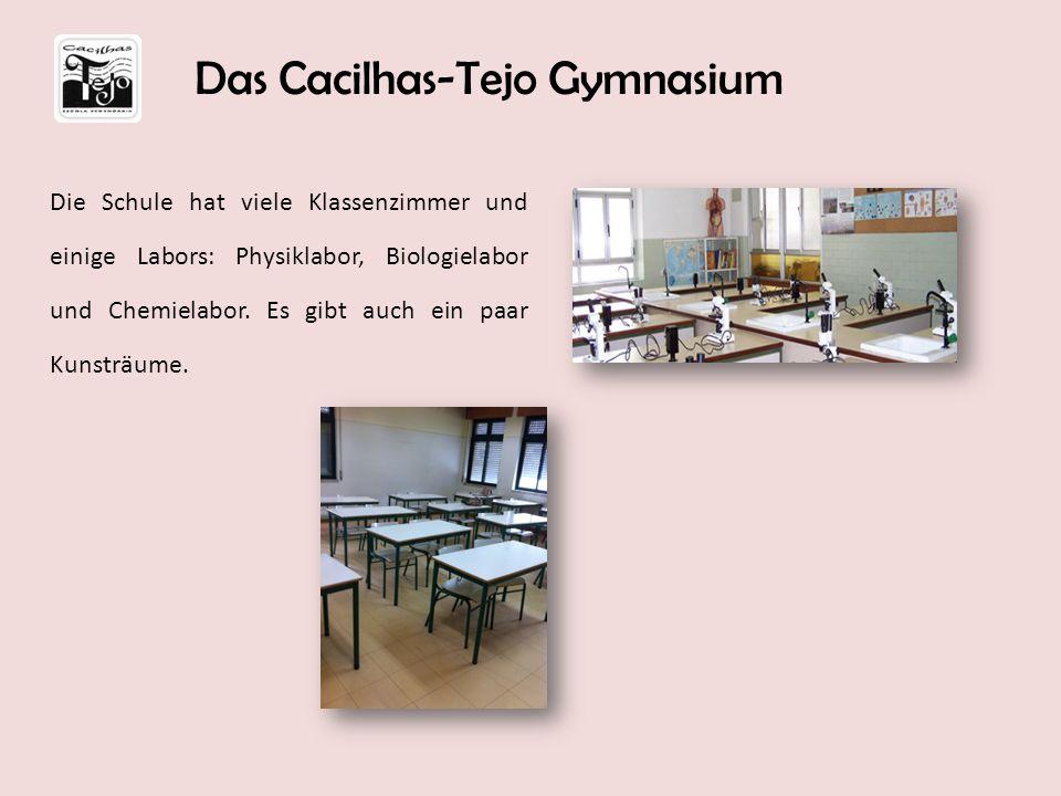 Die Schule hat viele Klassenzimmer und einige Labors: Physiklabor, Biologielabor und Chemielabor. Es gibt auch ein paar Kunsträume. Das Cacilhas-Tejo