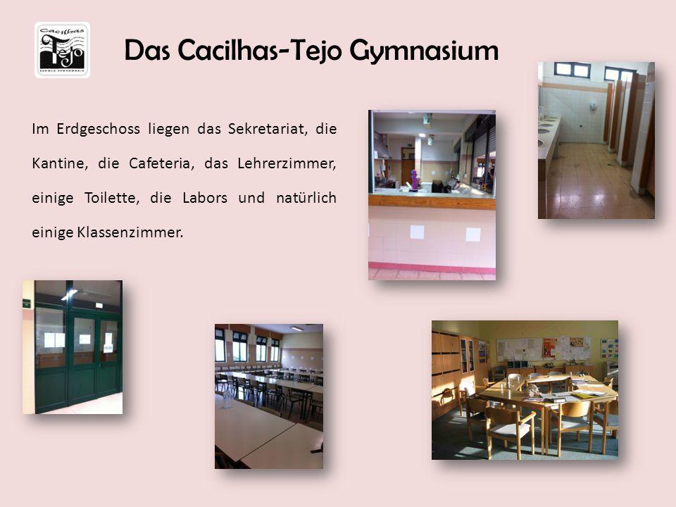 Im Erdgeschoss liegen das Sekretariat, die Kantine, die Cafeteria, das Lehrerzimmer, einige Toilette, die Labors und natürlich einige Klassenzimmer. D