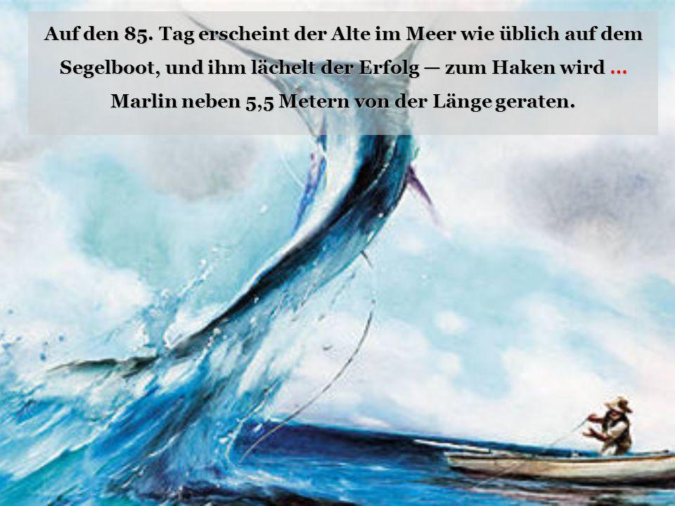 Auf den 85. Tag erscheint der Alte im Meer wie üblich auf dem Segelboot, und ihm lächelt der Erfolg — zum Haken wird … Marlin neben 5,5 Metern von der