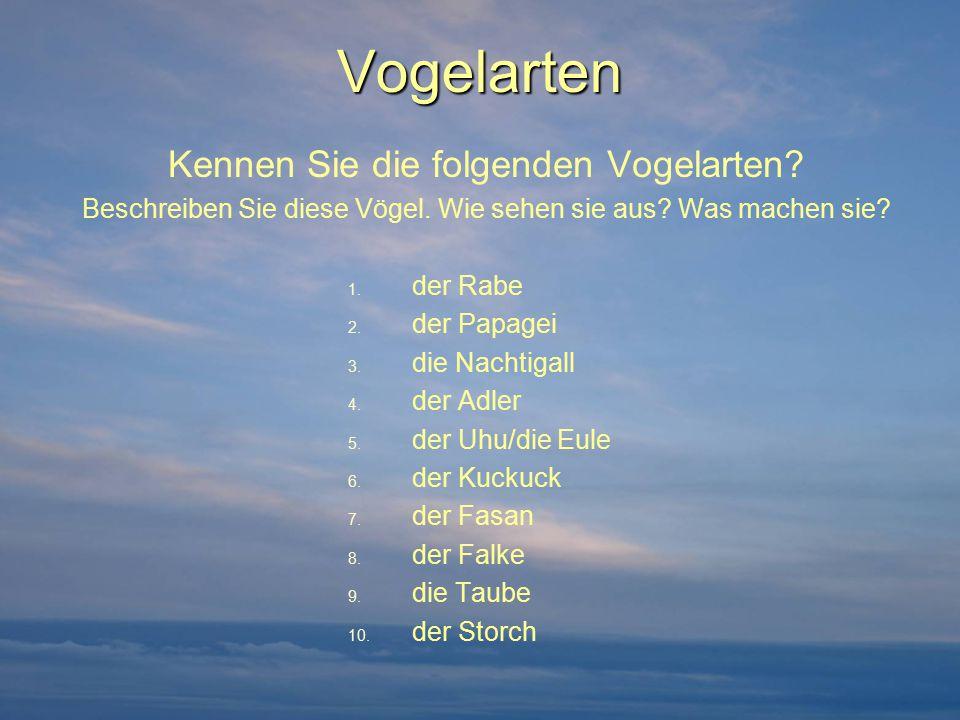 Wellensittich und Spatzen Das Lied von Gerhard Schöne: http://www.youtube.com/watch?v=EaABL-f6kok&feature=related (CD Version) http://www.youtube.com/watch?v=EaABL-f6kok&feature=related Zur Person: Geboren am 10.