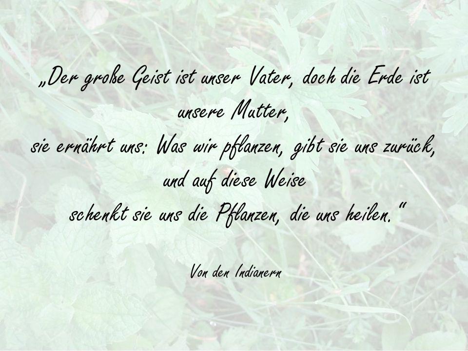 """""""Der große Geist ist unser Vater, doch die Erde ist unsere Mutter, sie ernährt uns: Was wir pflanzen, gibt sie uns zurück, und auf diese Weise schenkt sie uns die Pflanzen, die uns heilen. Von den Indianern"""