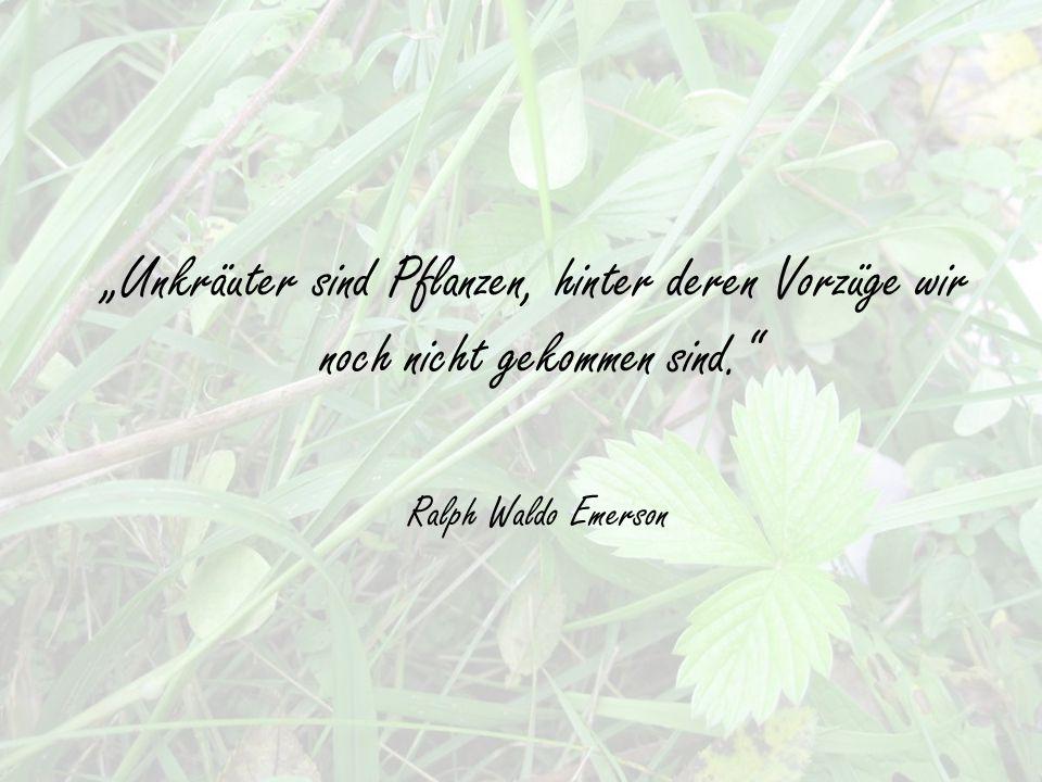 """""""Unkräuter sind Pflanzen, hinter deren Vorzüge wir noch nicht gekommen sind. Ralph Waldo Emerson"""